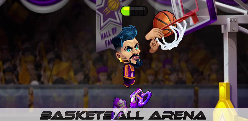 Basketball Arena Cover