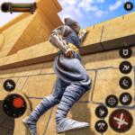 Ninja Assassin Shadow Master